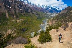 Mujer bonita joven que lleva las montañas del rastro de la mochila de la chaqueta azul El senderismo de la montaña oscila el fond Fotos de archivo