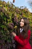 Mujer bonita joven que se coloca en el parque del otoño Foto de archivo