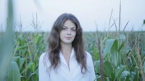 Mujer bonita que se coloca en campo del maíz joven almacen de video