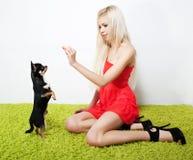 Mujer bonita rubia con su amigo - pequeño perro Imagen de archivo
