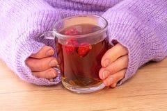 Mujer calentada por el té caliente foto de archivo
