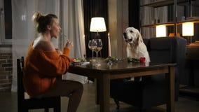 Mujer casual con el perro durante cena romántica almacen de metraje de vídeo
