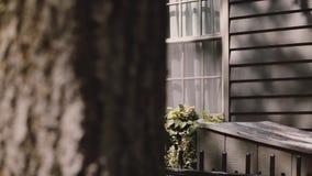 Mujer caucásica alegre feliz que camina a lo largo de la calle de Nueva York con las casas hermosas usando la cámara lenta del ap metrajes
