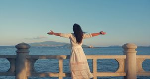 Mujer cauc?sica maravillosa que mira vista al mar la puesta del sol Muchacha hermosa joven que disfruta de la naturaleza, mirando almacen de video