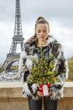 Mujer con el árbol de navidad contra torre Eiffel en París, Francia Fotos de archivo