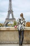 Mujer con el árbol de navidad delante de la torre Eiffel en París Fotografía de archivo