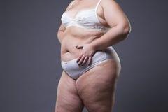 Mujer con el abdomen gordo, estómago femenino gordo Foto de archivo libre de regalías