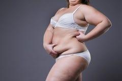 Mujer con el abdomen gordo, estómago femenino gordo Foto de archivo