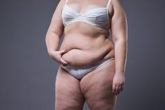 Mujer con el abdomen gordo, estómago femenino gordo Fotografía de archivo libre de regalías