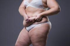 Mujer con el abdomen gordo, estómago femenino gordo Imagen de archivo libre de regalías