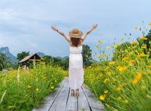 Mujer con el brazo aumentado en el puente de madera con el campo de flor amarillo del cosmos imagenes de archivo