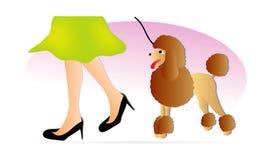 Mujer con el caniche stock de ilustración