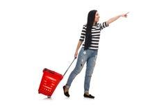 Mujer con el carro de compras libre illustration