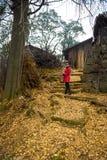 Mujer con el fondo de oro de las hojas Imagen de archivo libre de regalías
