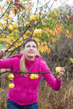 Mujer con el manzano Fotos de archivo libres de regalías
