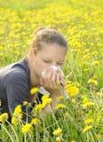 Mujer con el pañuelo en un prado Fotos de archivo libres de regalías