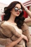 Mujer con el pelo oscuro en ropa elegante y abrigo de pieles lujoso Fotografía de archivo