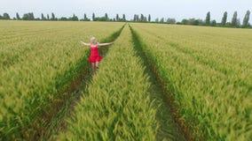 Mujer con el pelo rubio en un runsin rojo del vestido el campo con trigo metrajes