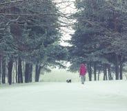 Mujer con el pequeño perro que camina en parque del invierno Imagen de archivo libre de regalías