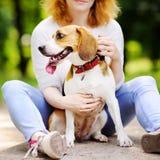 Mujer con el perro del beagle en el parque del verano Fotografía de archivo