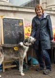 Mujer con el perro en la parada anti de UKIP en Thanet South Foto de archivo libre de regalías