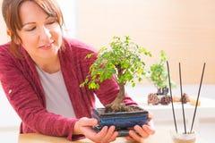 Mujer con el árbol de los bonsais Foto de archivo libre de regalías