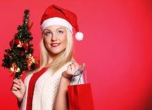 Mujer con el sombrero de Papá Noel que sostiene los panieres Foto de archivo