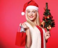 Mujer con el sombrero de Papá Noel que sostiene los panieres Imagen de archivo libre de regalías