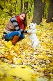 Mujer con el terrier foto de archivo