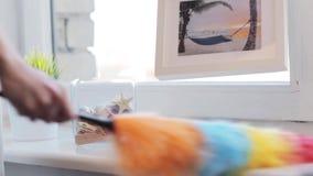 Mujer con el travesaño de la ventana de la limpieza del plumero en casa almacen de metraje de vídeo