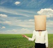 Mujer con la bolsa de papel sobre campo verde Imágenes de archivo libres de regalías
