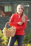 Mujer con la fruta de cosecha propia Fotografía de archivo libre de regalías