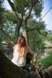 Mujer con la guitarra que se sienta en un árbol Fotos de archivo libres de regalías