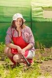 Mujer con la herramienta que cultiva un huerto que trabaja en jardín Imagen de archivo