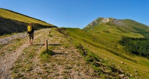 Mujer con la mochila que camina a lo largo de una trayectoria en las montañas del Cáucaso Fotos de archivo libres de regalías