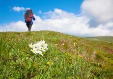 Mujer con la mochila turística en la montaña Fotos de archivo libres de regalías