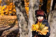 Mujer con las hojas del amarillo del arce Imagen de archivo
