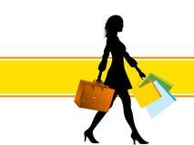 Mujer con los bolsos Imagen de archivo libre de regalías