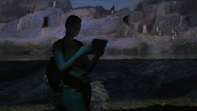Mujer con los pingüinos del tiroteo del cojín en oceanarium metrajes