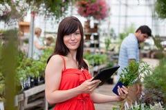 Mujer con PC de la tablilla y la planta potted Foto de archivo