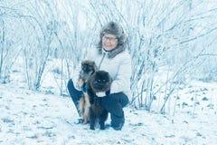 Mujer con pekinés del perro y gato en parque del invierno imagen de archivo