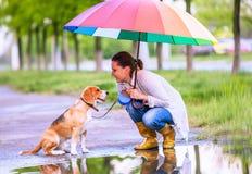 Mujer con su paraguas brillante grande del ander del perro del beagle que se sienta imágenes de archivo libres de regalías