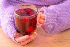 Mujer con té caliente imágenes de archivo libres de regalías