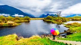 Mujer con un paraguas coloreado arco iris debajo de las nubes de lluvia oscuras en un d?a de primavera fr?o en las lagunas del pa fotografía de archivo