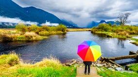 Mujer con un paraguas coloreado arco iris debajo de las nubes de lluvia oscuras en un d?a de primavera fr?o en las lagunas del pa imagen de archivo libre de regalías