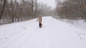 Mujer con un perro, funcionamientos a lo largo del camino en el parque, en una ventisca violenta snowing Cámara lenta almacen de video