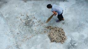 Mujer con una escoba que barre el patio Fotos de archivo libres de regalías
