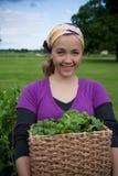 Mujer con verdes de cosecha propia Fotografía de archivo libre de regalías