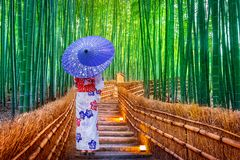 Mujer de bambú de Forest Asian que lleva el kimono tradicional japonés en el bosque de bambú en Kyoto, Japón fotos de archivo
