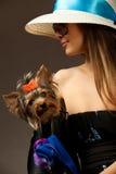 Mujer de Glamor con el terrier de Yorkshire Imágenes de archivo libres de regalías